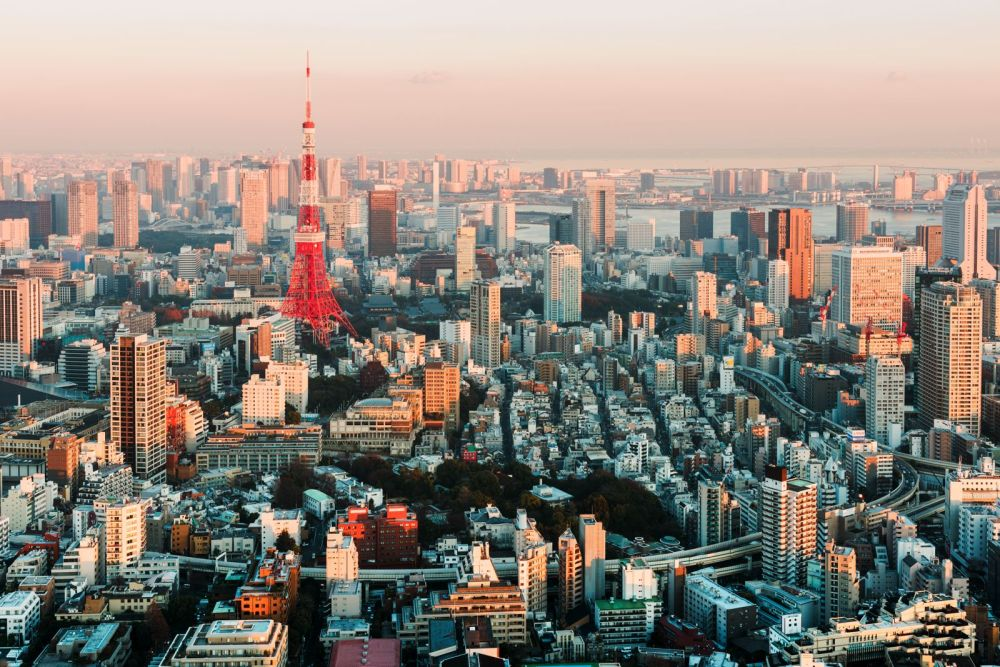 18 Fun Things You Have To See And Do In Tokyo (6)