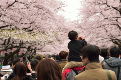 19 Very Best Things To Do In Tokyo (20)