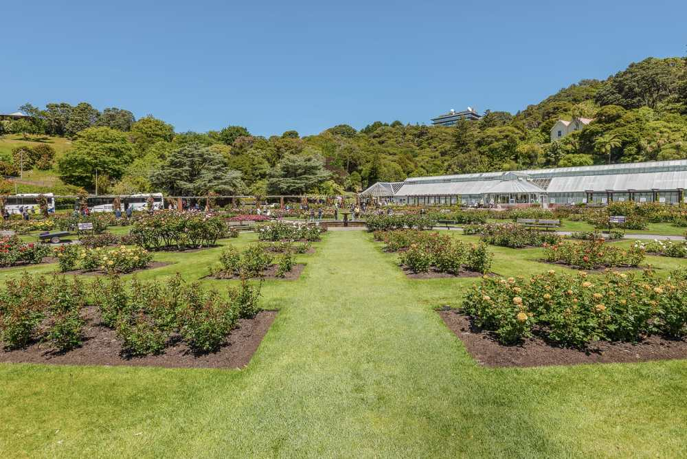 15 Things To Do In Wellington, New Zealand (9)