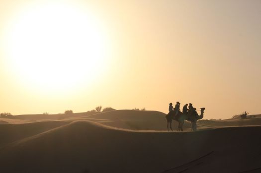Things To Do On A First Time Trip To Dubai (15)