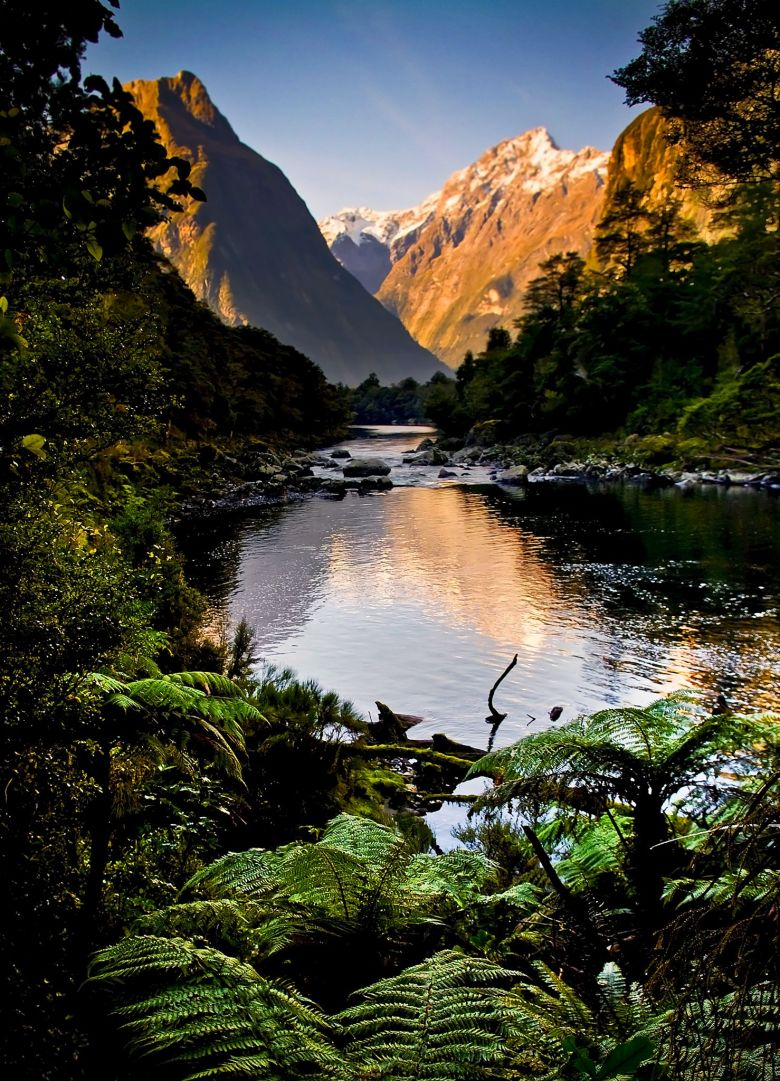 12 Places You Need to Visit on a Trip Across New Zealand (13)