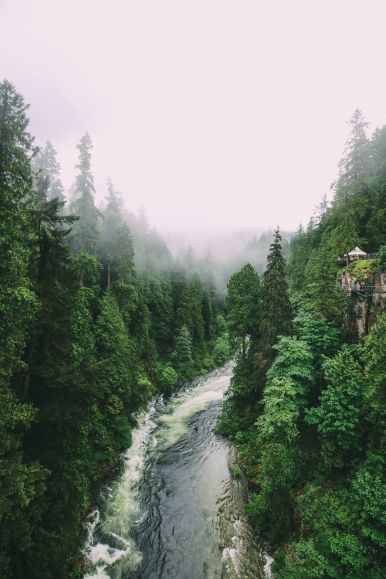 Photos And Postcards From Vancouver, Whistler, Squamish And The Sunshine Coast... In British Columbia, Canada (14)