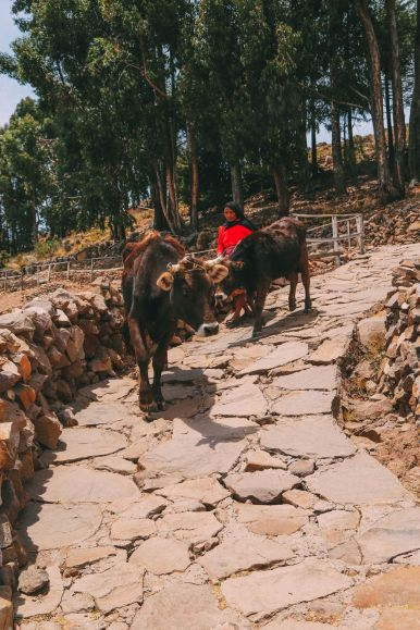 An Afternoon in Taquile Island, Peru (8)