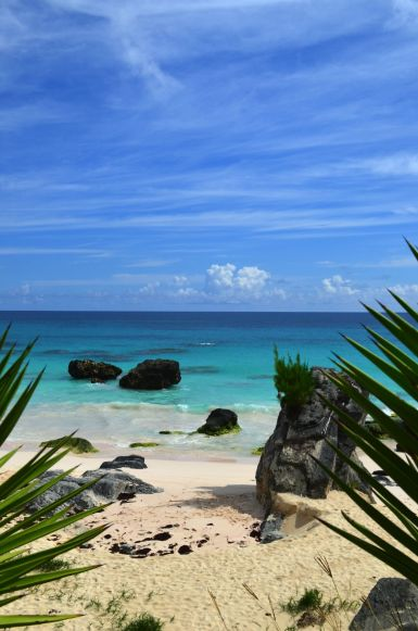 11 Things You Have To See and Do When Visiting Bermuda (3)