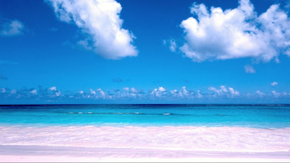 11 Things You Have To See and Do When Visiting Bermuda (9)
