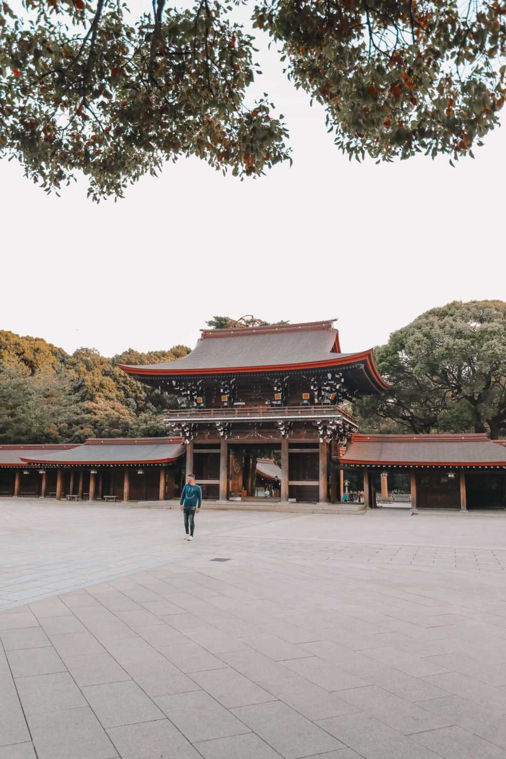 19 Very Best Things To Do In Tokyo (6)