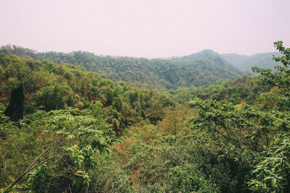 From Chitwan To Lumbini, Nepal (3)