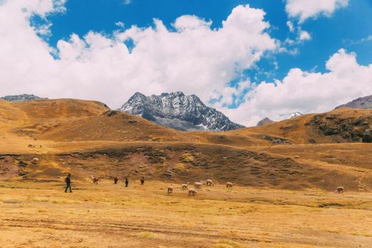 The Amazing Rainbow Mountains Of Peru – How To Get There And Other Things You Need To Know (82)
