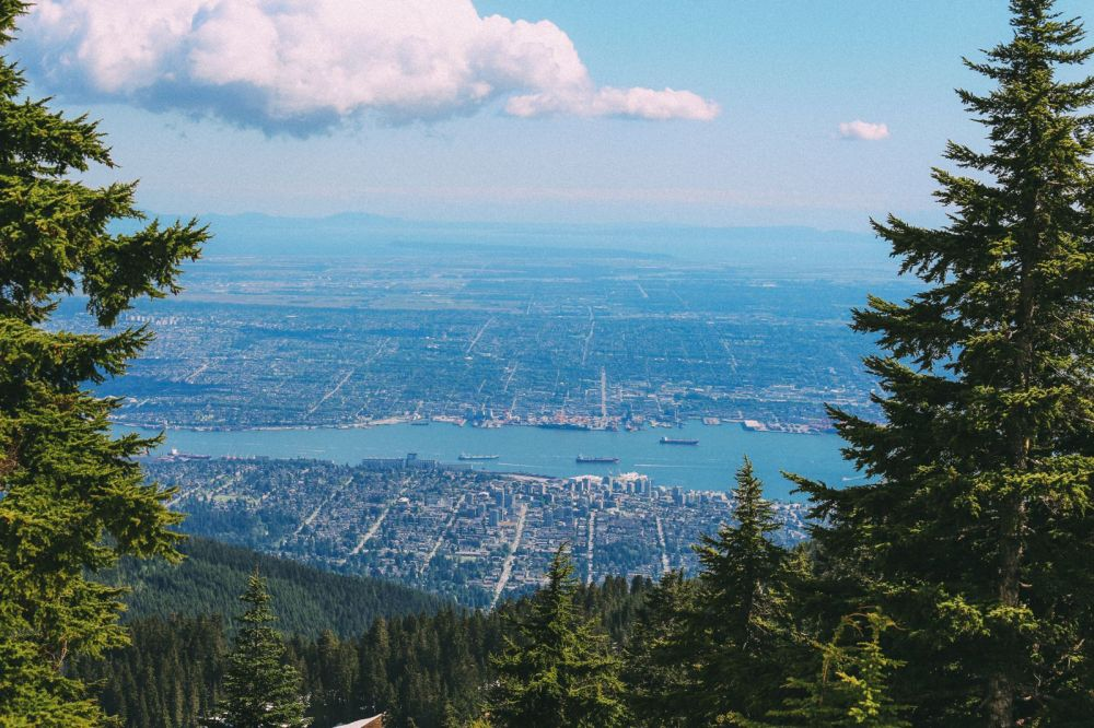 Finding Grizzly Bears On Grouse Mountain... In Vancouver, Canada (38)