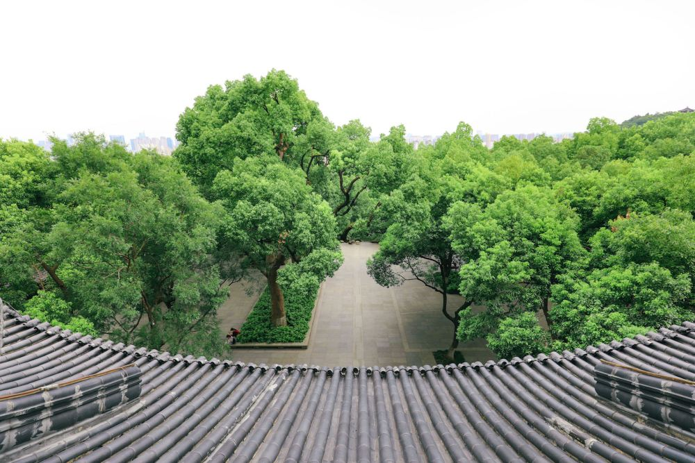 These Are The Many Reasons Why You Need To Visit Hangzhou, China (3)