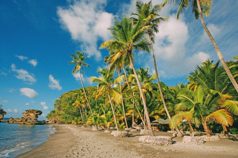 11 Fantastic Places To Visit In The Caribbean Island Of St Lucia (13)