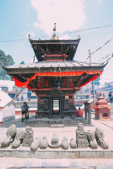 An Afternoon In Pashupatinath Temple – Nepal's Most Sacred Temple… In Kathmandu (44)