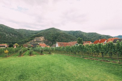 A Trip To Wachau - The Most Beautiful Valley In Austria (25)