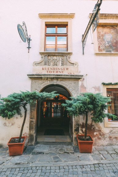 A Trip To Wachau - The Most Beautiful Valley In Austria (45)