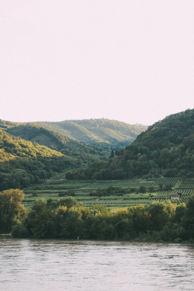 A Trip To Wachau - The Most Beautiful Valley In Austria (48)