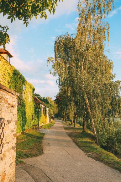 A Trip To Wachau - The Most Beautiful Valley In Austria (58)