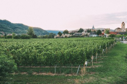 A Trip To Wachau - The Most Beautiful Valley In Austria (61)