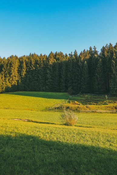 The Beautiful Villages And Rolling Hills Of Upper Austria (1)
