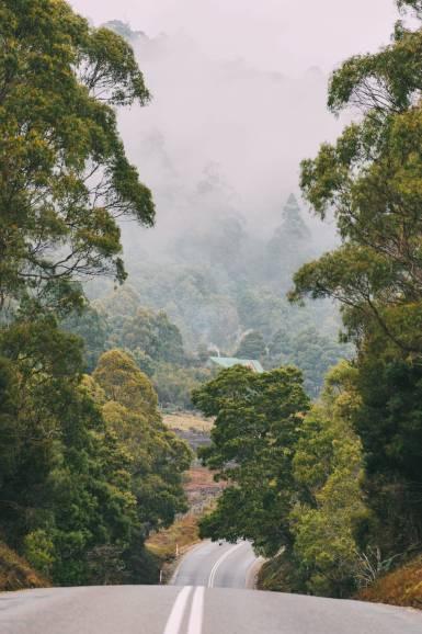10 Amazing Places To Visit In Tasmania, Australia (7)