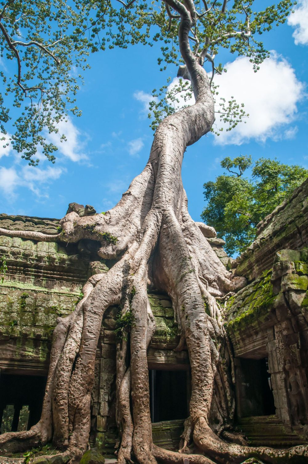 11 Incredible Temples You Have To See In Angkor, Siem Reap, Cambodia (12)