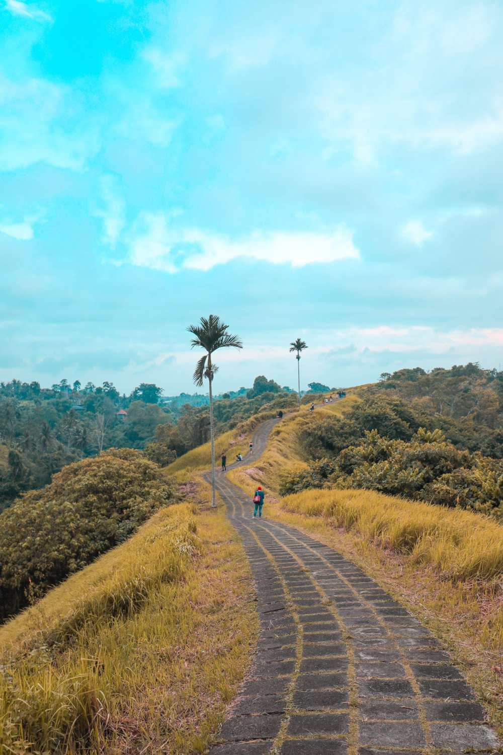 Arrival In Bali + The Campuhan Ridge Walk In Ubud (31)