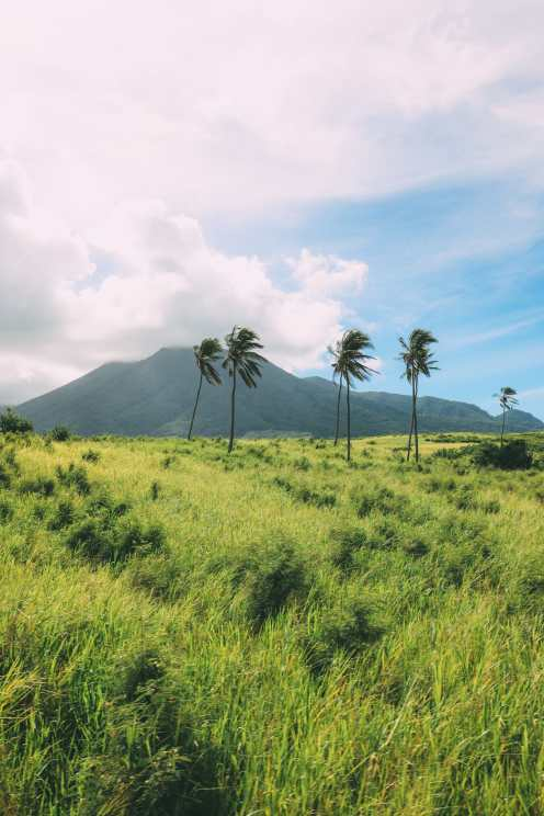 Photos And Postcards From St Kitts... In The Caribbean (29)