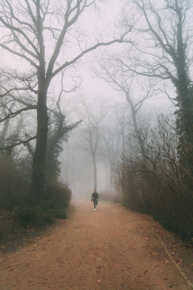 The Real-Life Fairytale Kingdom Of Potsdam, Germany (37)