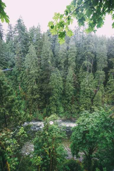 How To Spend A Lazy Day In Vancouver, Canada...(Plus, Exploring The Incredible Capilano Suspension Bridge) (13)