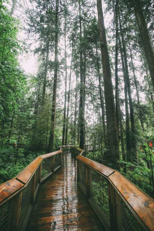 How To Spend A Lazy Day In Vancouver, Canada...(Plus, Exploring The Incredible Capilano Suspension Bridge) (25)