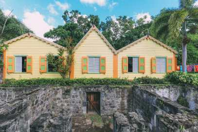 First Impressions Of The Island Of St Kitts (37)