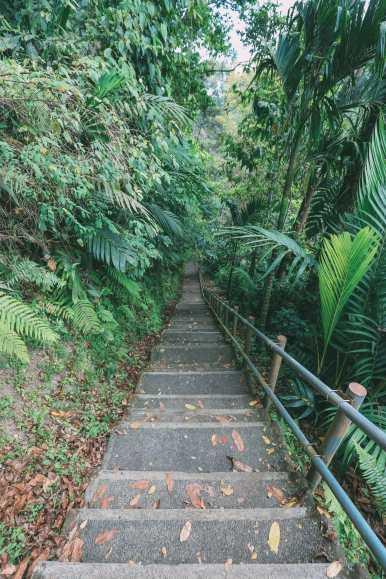 Bali Travel - The Beautiful Nungnung Waterfall And Ulun Danu Bratan Temple (2)