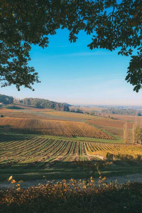 French Wine, French Castles And Delicious French Food - A Trip To French Wine Country (25)