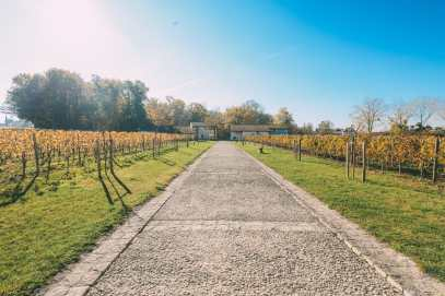 French Wine, French Castles And Delicious French Food - A Trip To French Wine Country (44)