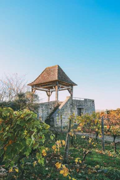 French Wine, French Castles And Delicious French Food - A Trip To French Wine Country (59)