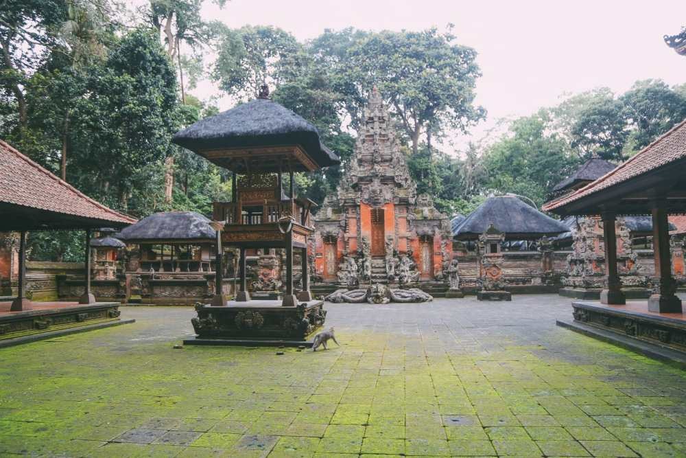 Ubud Monkey Forest In Bali - Things To Know Before You Visit (12)