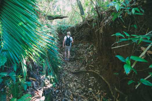 Hiking To The Top Of A Volcano... In the Caribbean! (6)