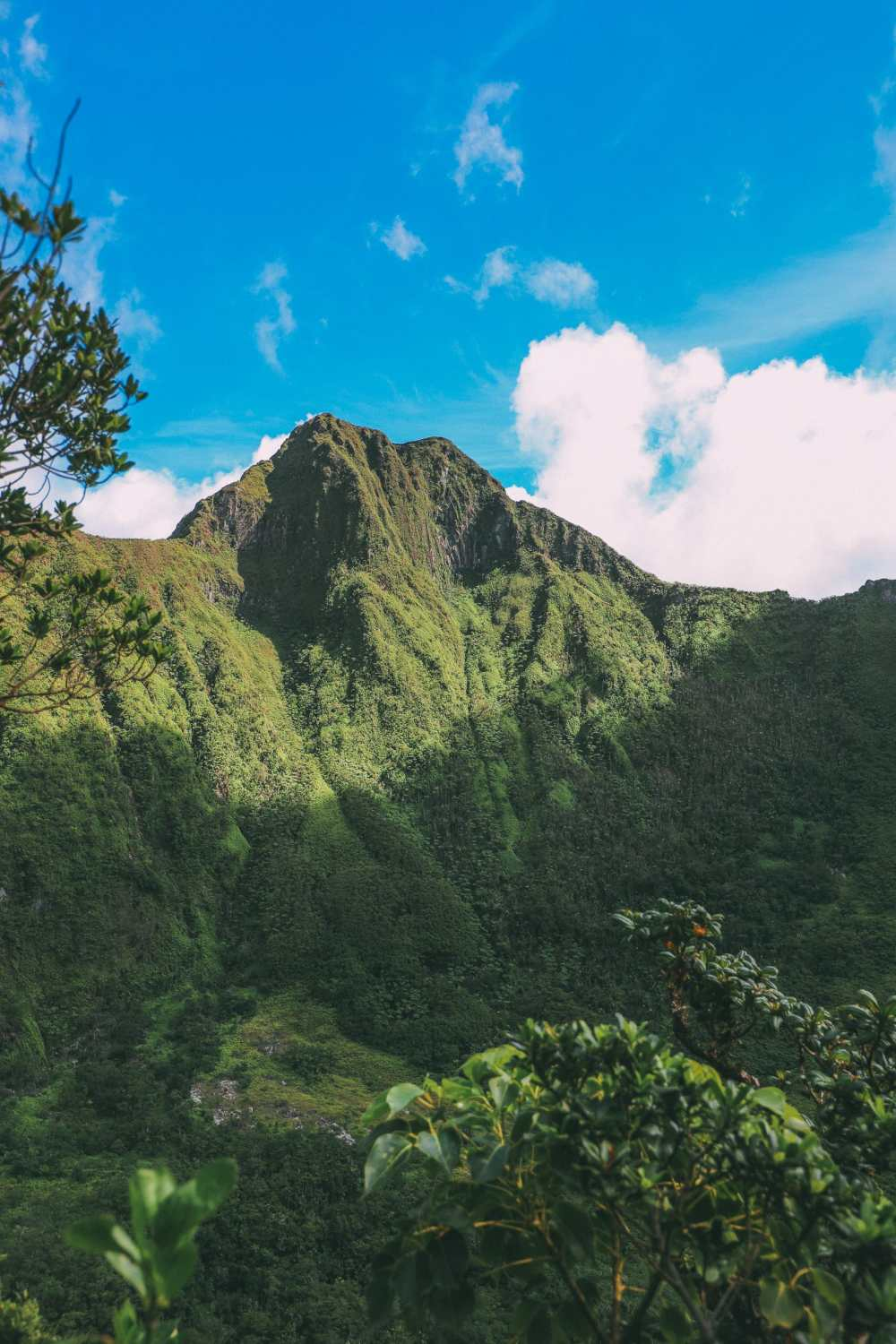 Hiking To The Top Of A Volcano... In the Caribbean! (11)