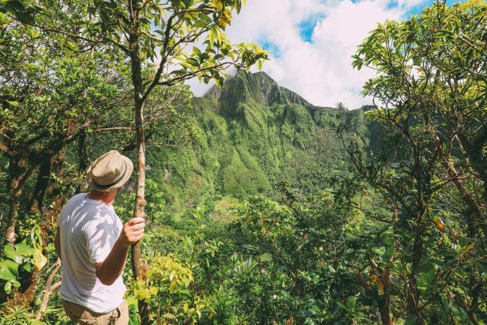 Hiking To The Top Of A Volcano... In the Caribbean! (14)
