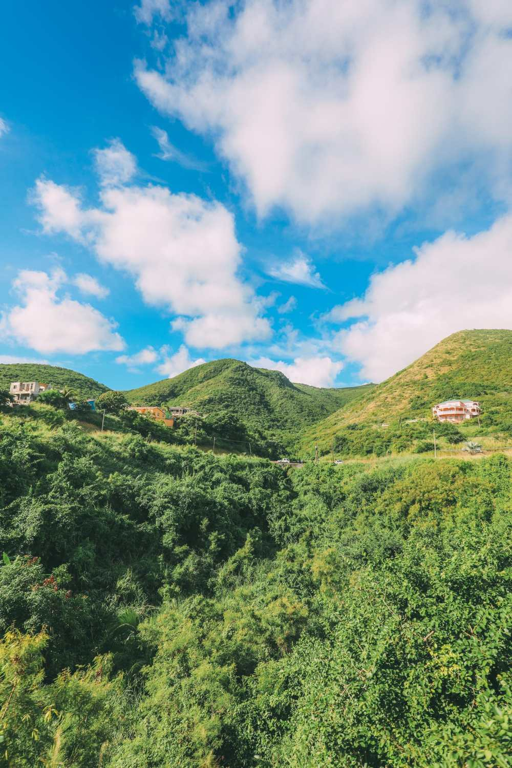 Rugged Coastlines, Old Forts And Lobster Dinners... On The Caribbean Island Of St Kitts (7)