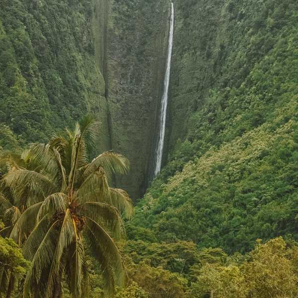 Best Hikes in Hawaii (15)