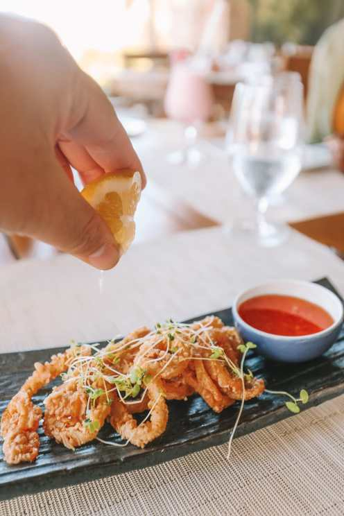 Down At The Beach House... In St Kitts, The Caribbean (19)
