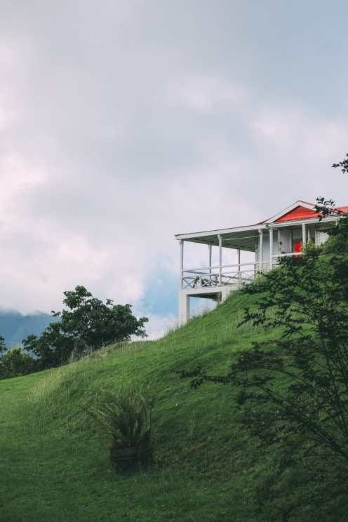 Down At The Beach House... In St Kitts, The Caribbean (33)