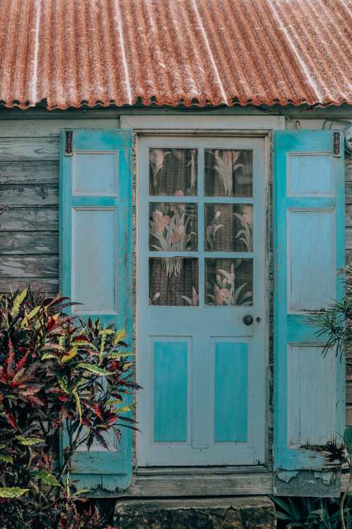 Down At The Beach House... In St Kitts, The Caribbean (41)