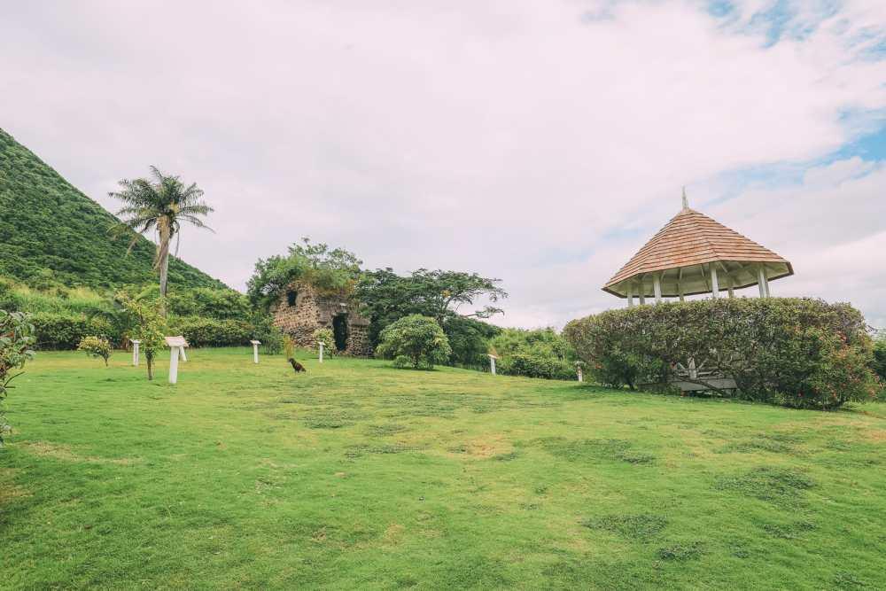 Rum, Rum And More Rum... In St Kitts (15)