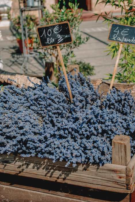 The 12 Best Markets In Paris You Have To Visit (20)