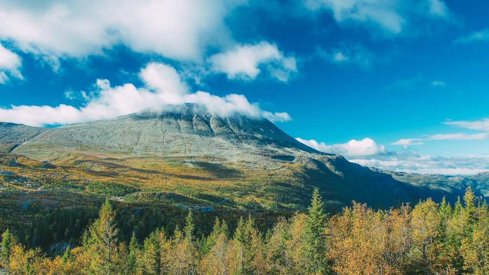 The 14 Best Hikes In Norway You Have To Experience (12)