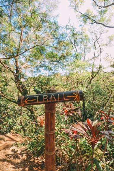 24 Hours In Maui, Hawaii (28)