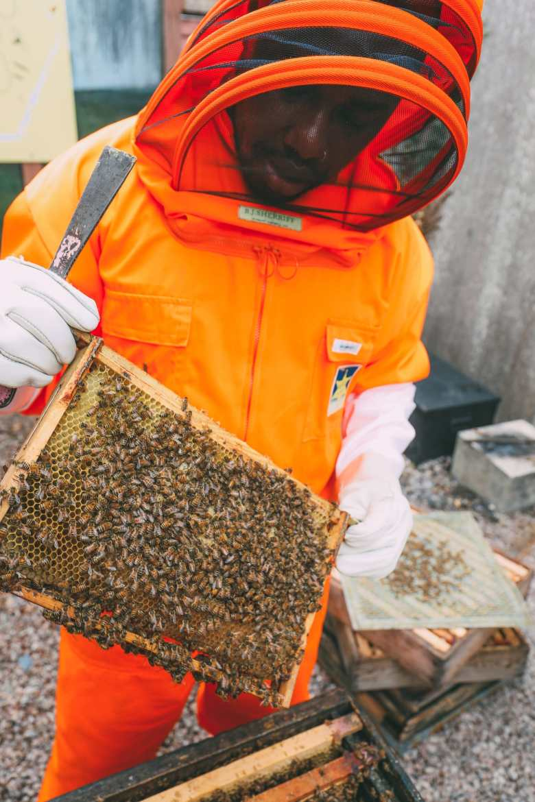 How To Be A Bee-Keeper For A Day In England (13)