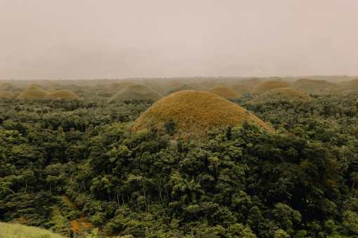 Photos And Postcards From Bohol In The Philippines (2)