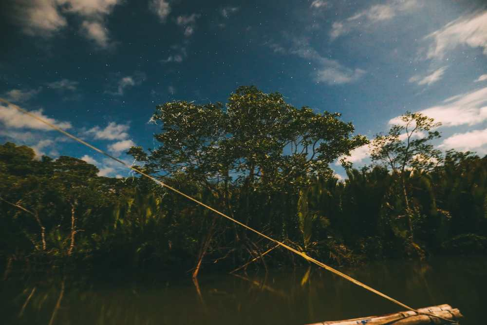 Photos And Postcards From Bohol In The Philippines (6)